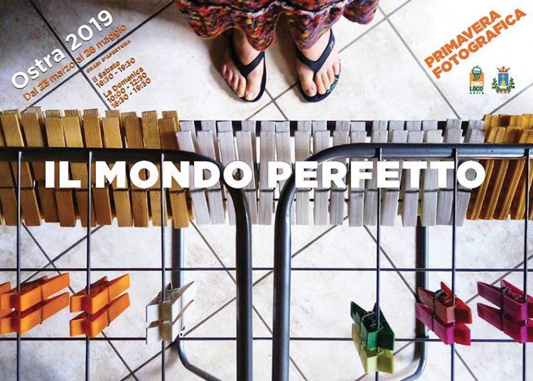 PFO_mondo_perfetto